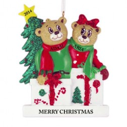 Beary Love Family of 2 Personalized Christmas Ornament