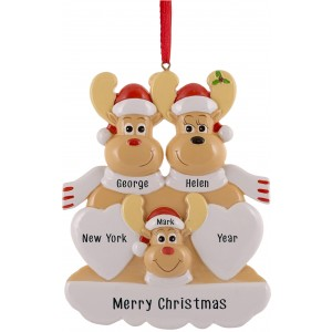 Sweet Reindeer 3 Family Personalized Christmas Ornament