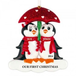 Penguin with Umbrella Family of 2 Personalized Christmas Ornament